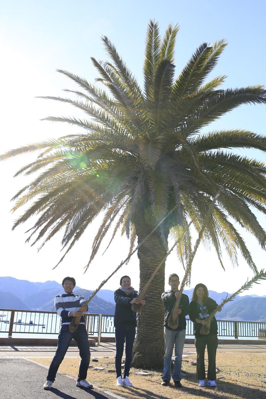 mikiura (1)