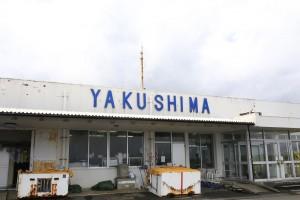 yakkuru (33)